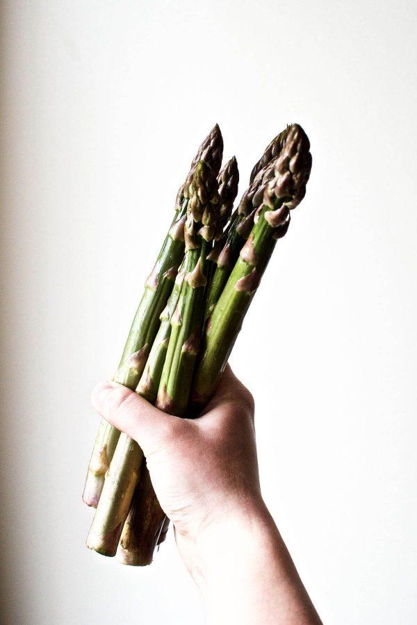 Danske grønne asparges fra Torup Bakkegård