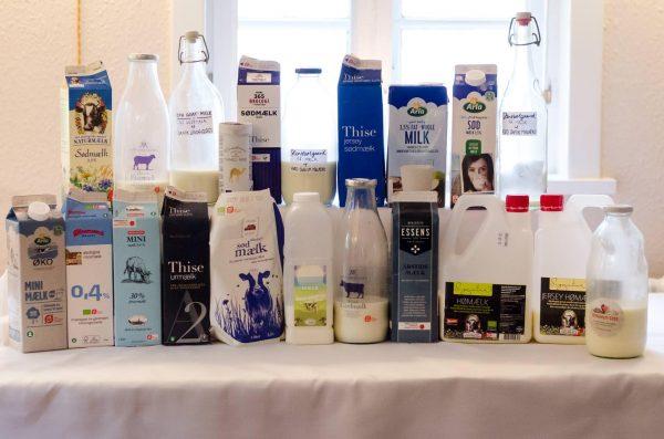 Mælkesmagning med Mejeriforeningen