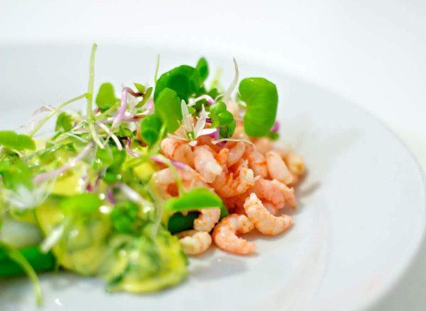 Kogte fjordrejer og asparges med ramsløgshollandaise og friske urter